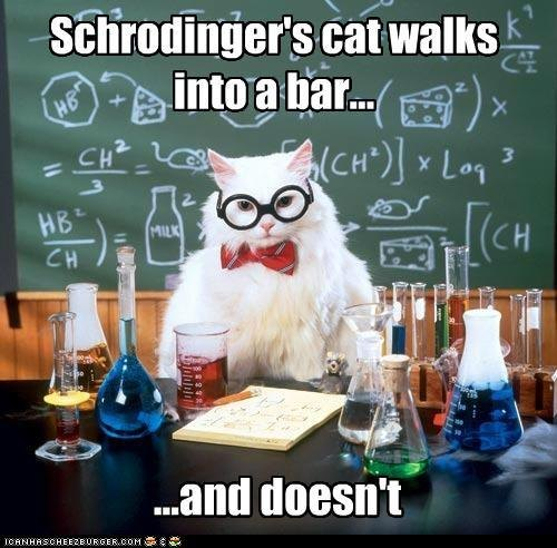 Schrodinger's cat walks into a bar... and doesn't